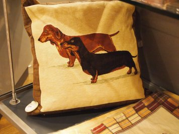 Dachshund pillow!