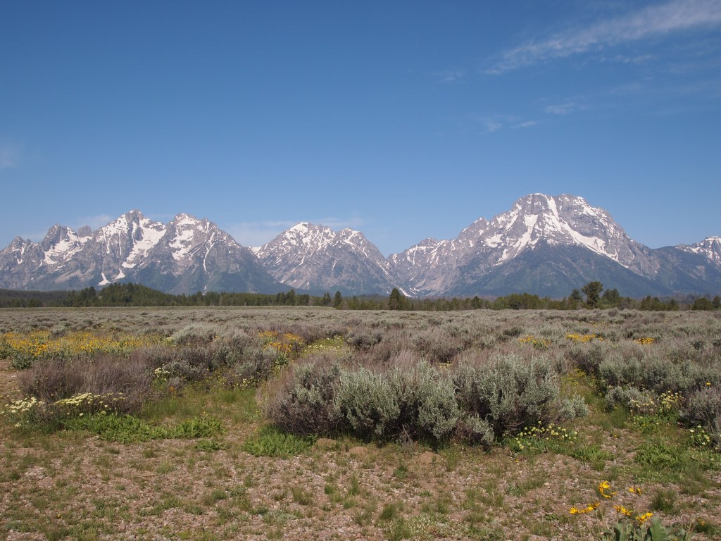 Gorgeous view of the Teton Range