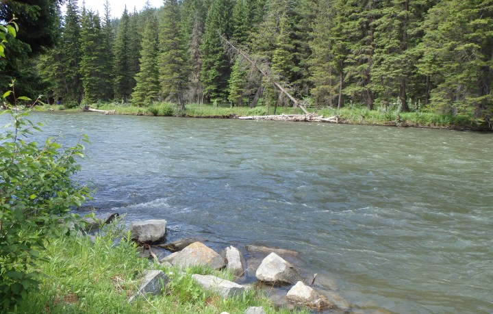 The Gallatin River