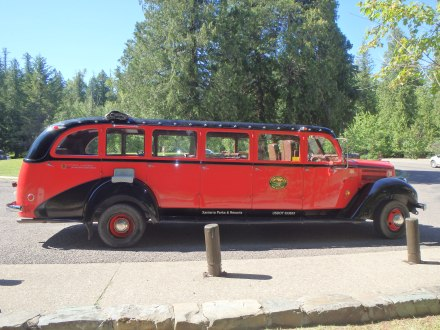 The red buses are original to the 1930s and take tourists all over the park