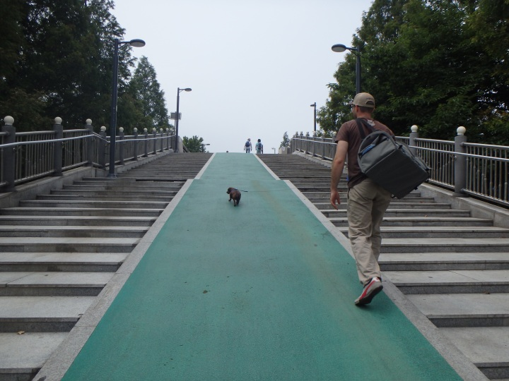 Going over to Ilsan Lake Park