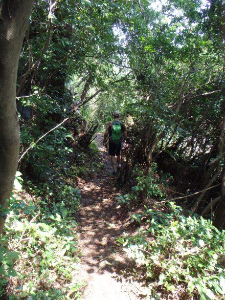 Very narrow path