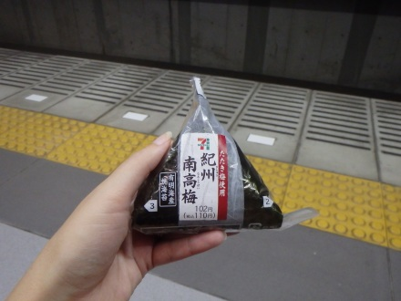 Our snacks for the train - awesome 7/11 onigiri and sushi
