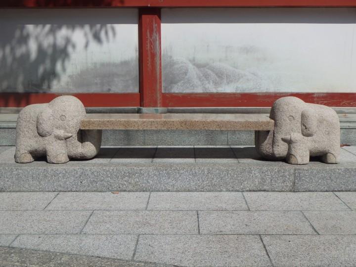 I love the elephants!
