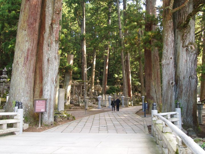 Crossing Ichi-no-hashi