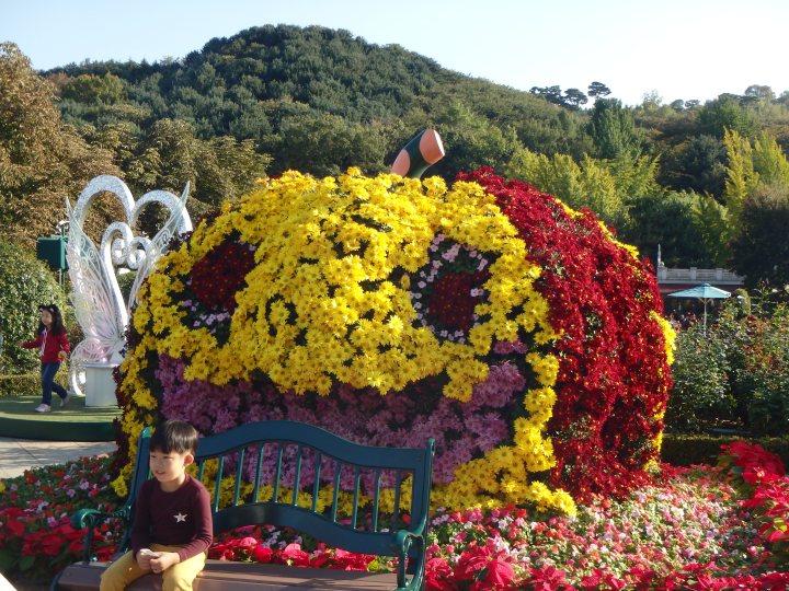A pumpkin of flowers!