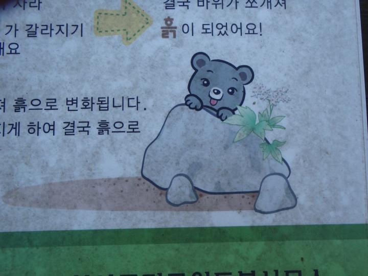 What a cute bear