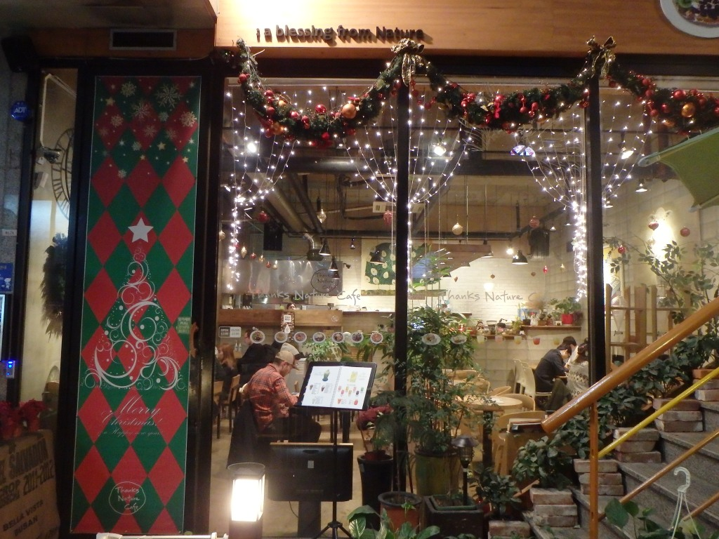 The cafe decorated for Christmas!