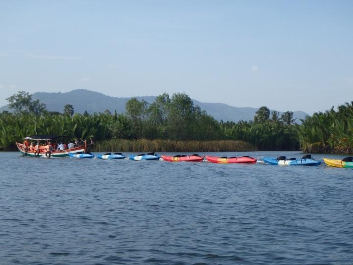kayak flotilla