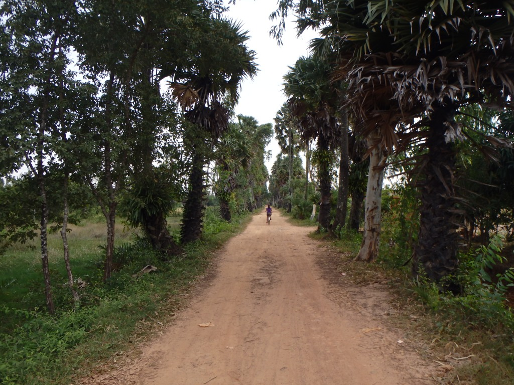the road leading away from the wat
