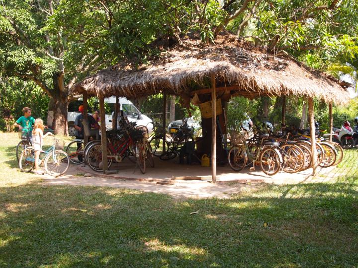 all the free bicycles for guests