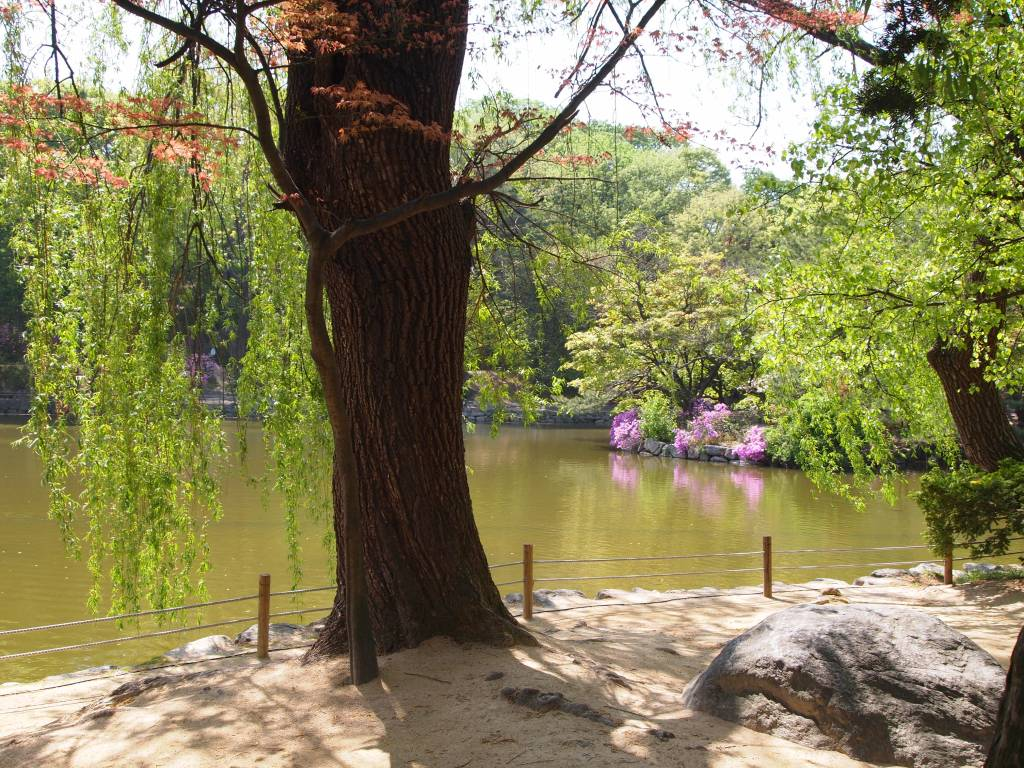 Chundangji Pond was once a royal farming plot but was replaced with a pond by the Japanese.