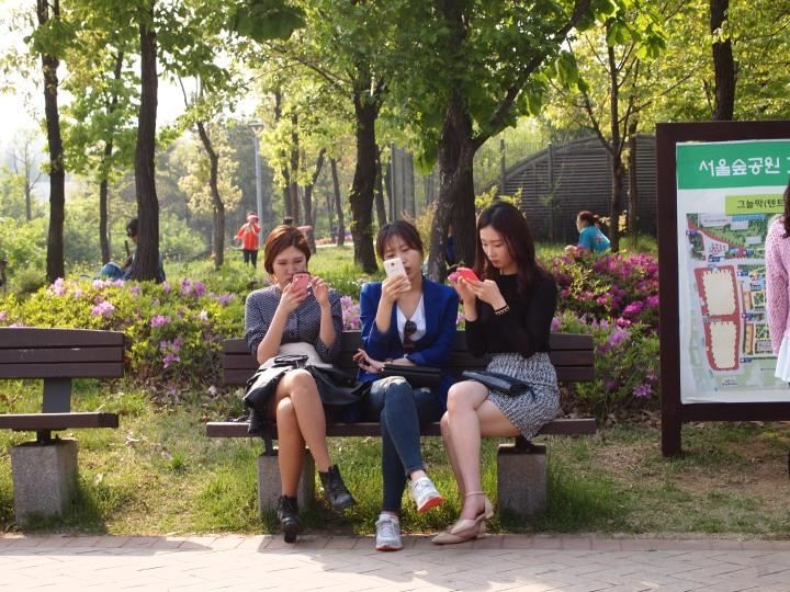 The way true Seoulites enjoy the outdoors