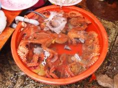 Tub o' octopuses