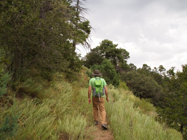 Tall grasses lined the path as we climbed higher