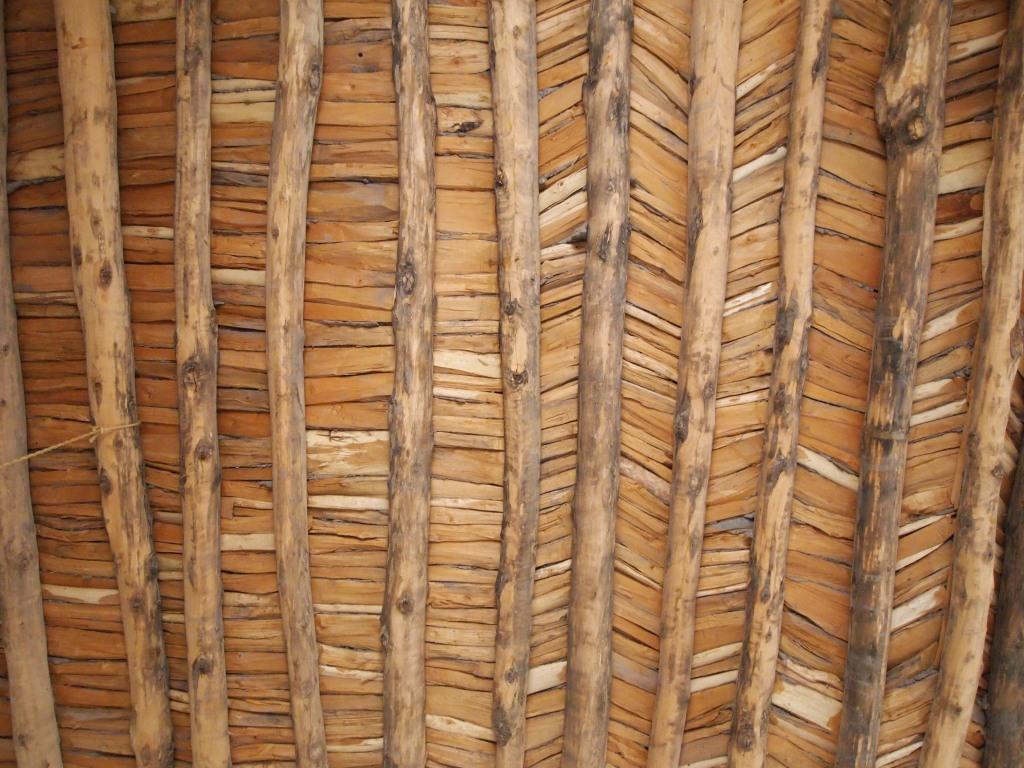 Cottonwood ceiling