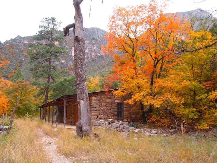 The hunter's cabin