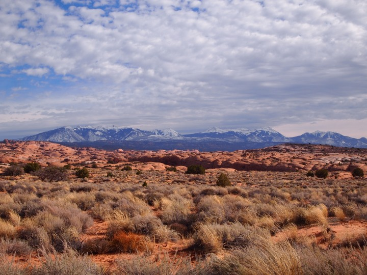 La Sal Mtns. in the distance