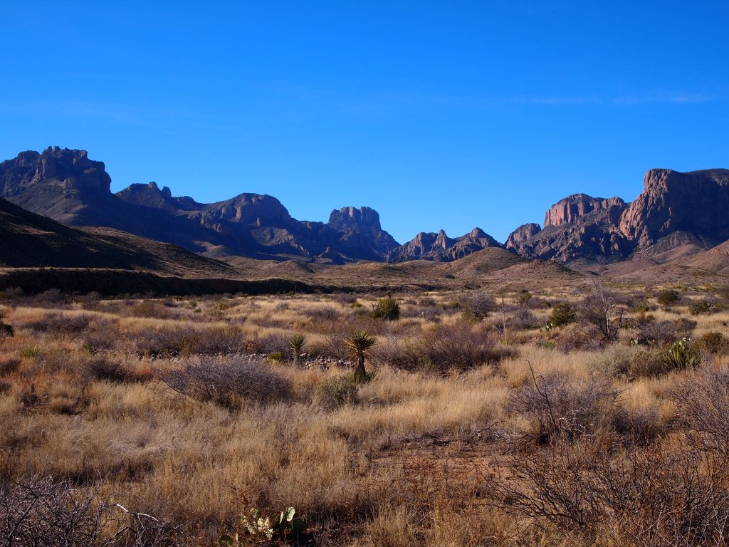 The Chisos Mtns.