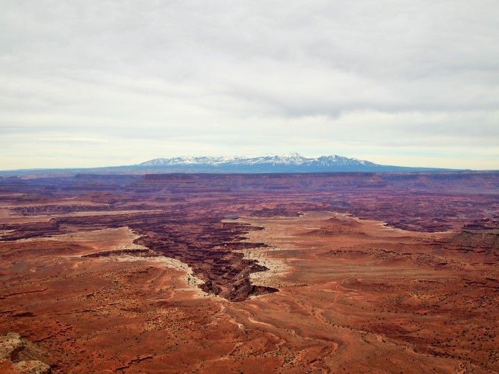 Buck Canyon Overlook & La Sal Mountains in the background