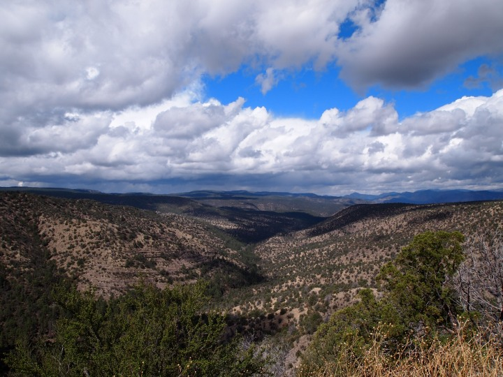 Gorgeous vistas of the National Forest