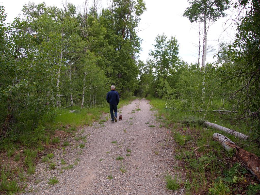 Walking on the Harriman Trail