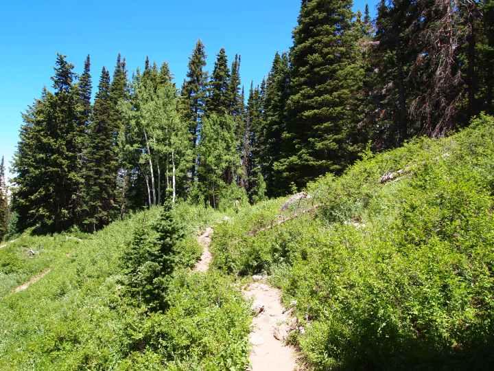 Hiking back to Silver Lake