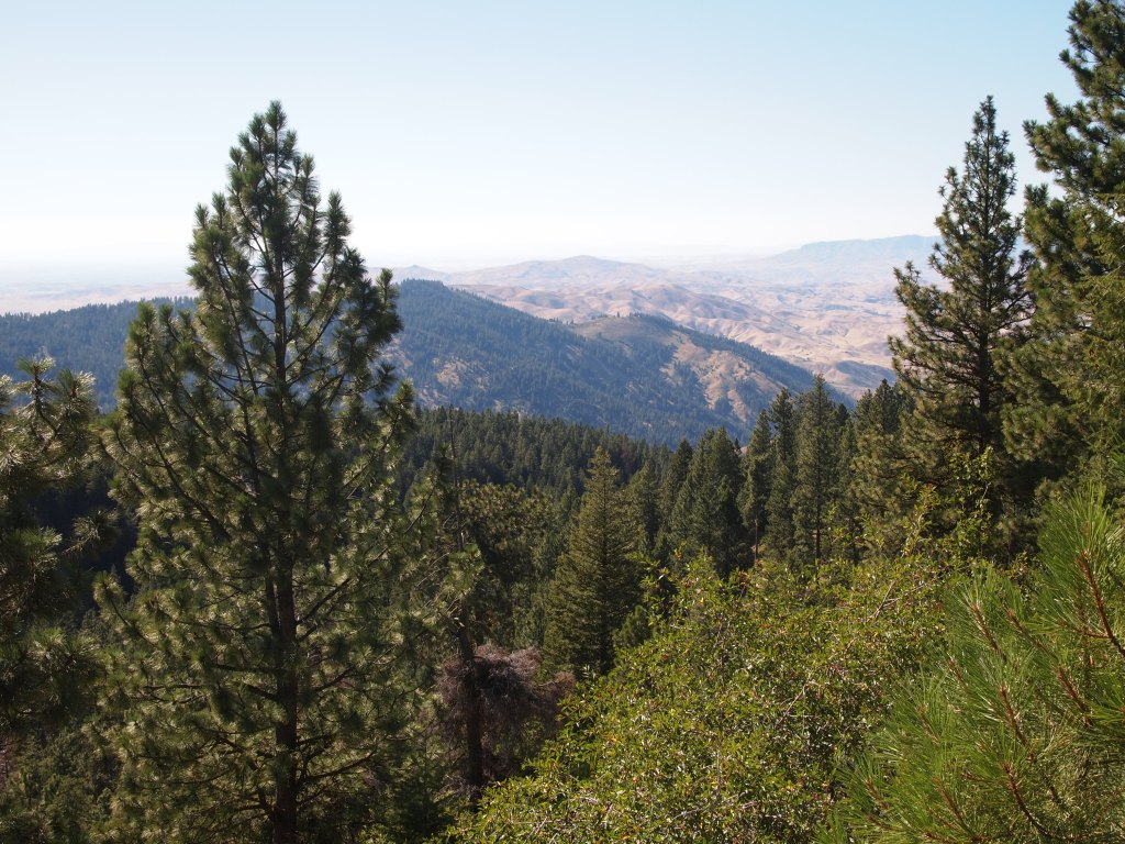 Views from our drive to Bogus Basin