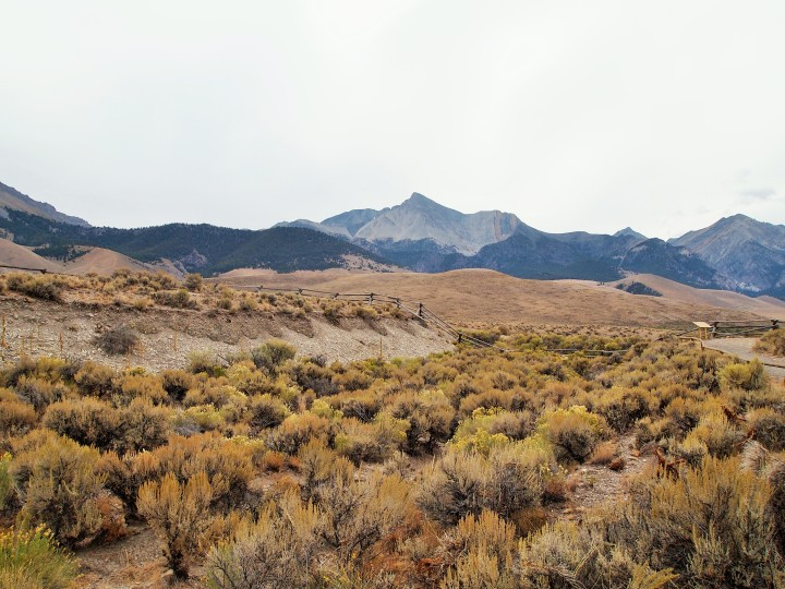 The scarp with Mt. Borah in the background