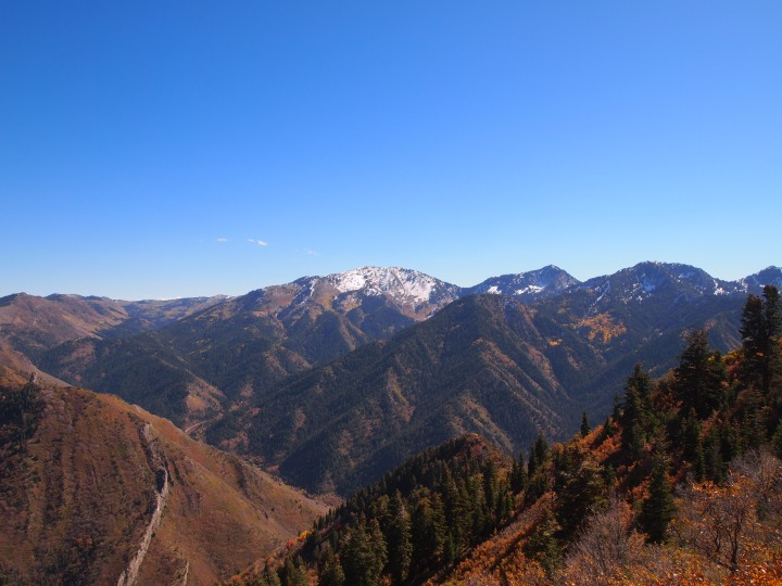More of Mill Creek Canyon