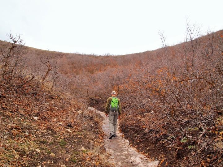 Zach navigating the frozen path